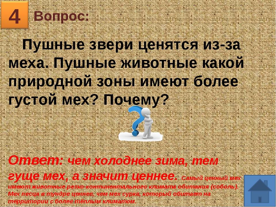 Вопрос: 5 Ответ: Уссурийская тайга, Приморский край «Здесь все не так у нас....