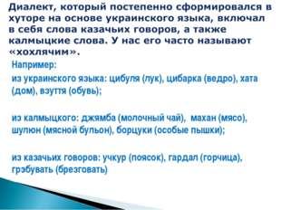 Например: из украинского языка: цибуля (лук), цибарка (ведро), хата (дом), вз