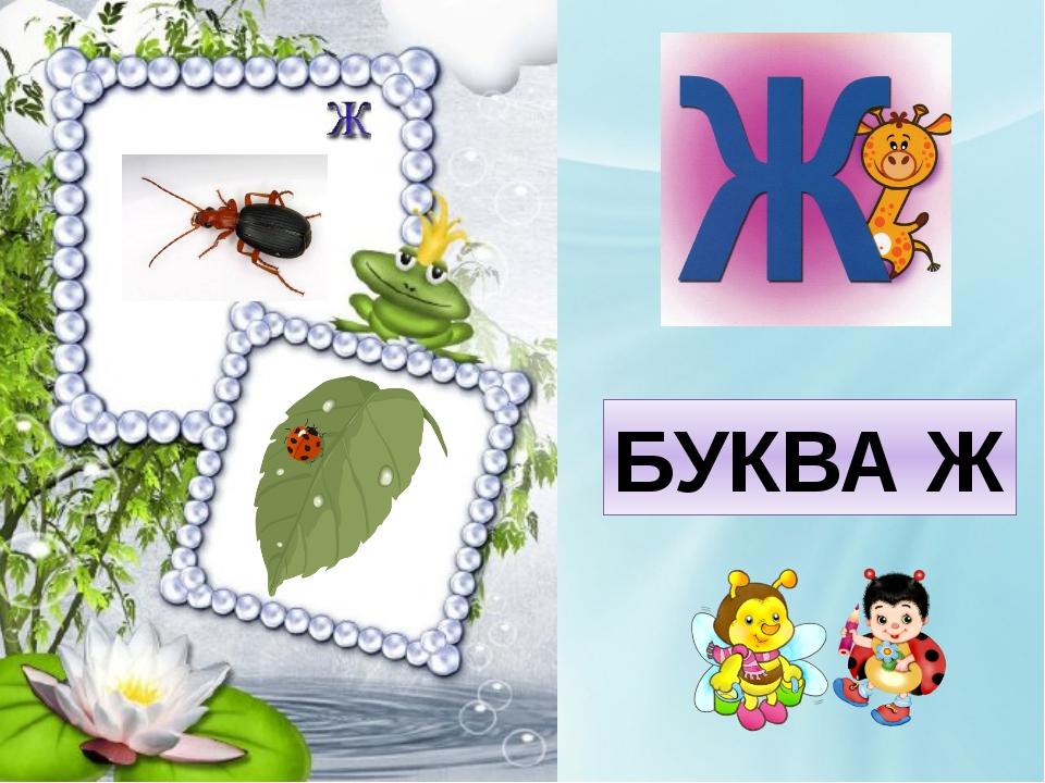 БУКВА Ж