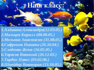 1.Алёшина Александра(12.03.05.) 2.Мальцев Кирилл (08.08.05.) 3.Мельник Анаста
