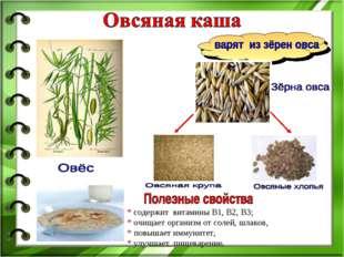 * содержит витамины B1, В2, В3; * очищает организм от солей, шлаков, * повыша