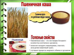 * Пшеничная каша – это поставщик большого количества клетчатки в организм; *
