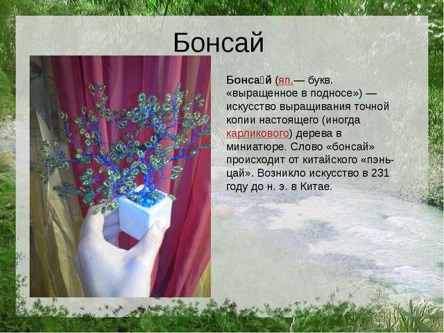 Бонсай Бонса́й(яп.— букв. «выращенное в подносе»)— искусство выращивания то...