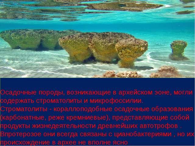 Осадочные породы, возникающие в архейском эоне, могли содержать строматолиты...