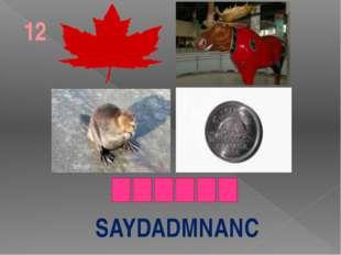 SAYDADMNANC 12