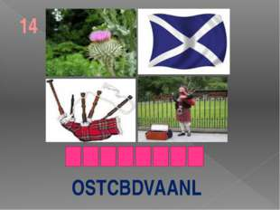 OSTCBDVAANL 14