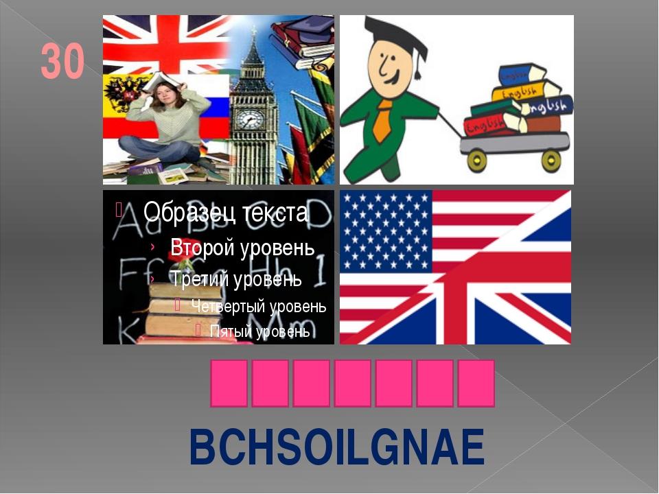 BCHSOILGNAE 30