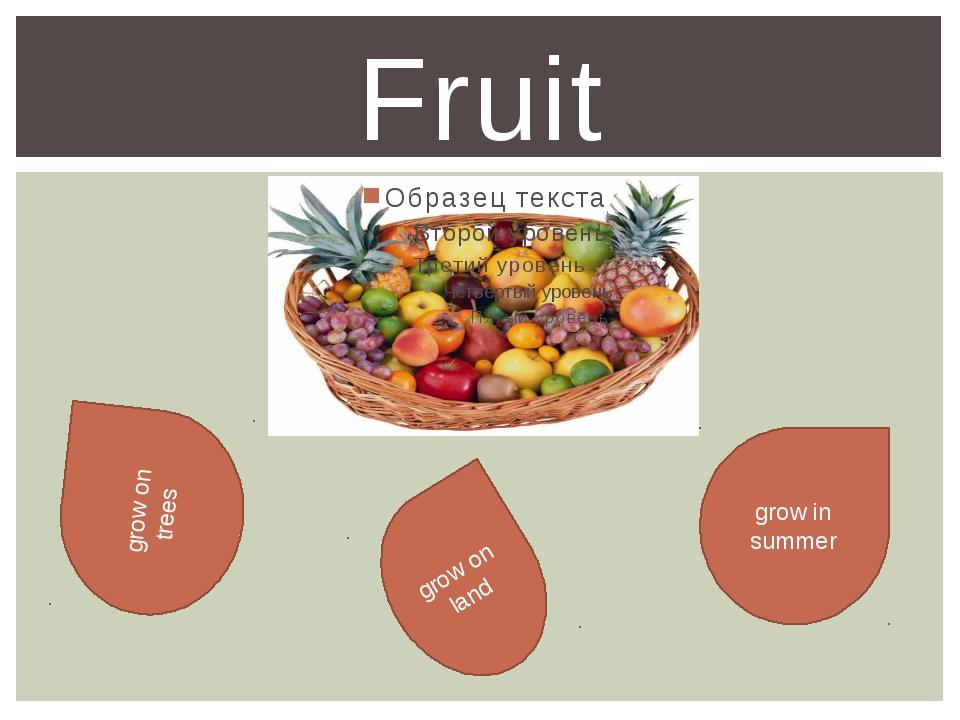 Fruit grow in summer grow on trees grow on land