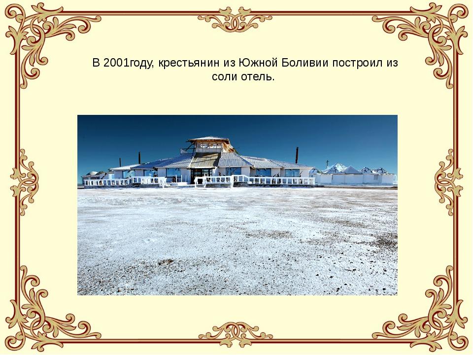 В 2001году, крестьянин из Южной Боливии построил из соли отель.