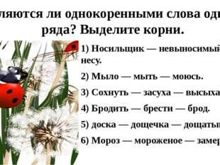 Являются ли однокоренными слова одного ряда? Выделите корни. 1) Носильщик — н
