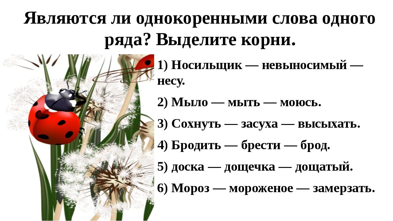 Являются ли однокоренными слова одного ряда? Выделите корни. 1) Носильщик — н...