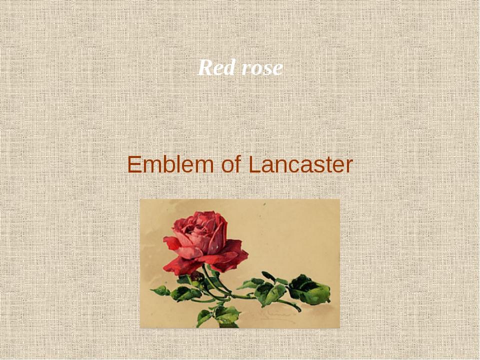 Red rose Emblem of Lancaster