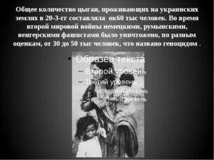 Общее количество цыган, проживающих на украинских землях в 20-3-гг составляла