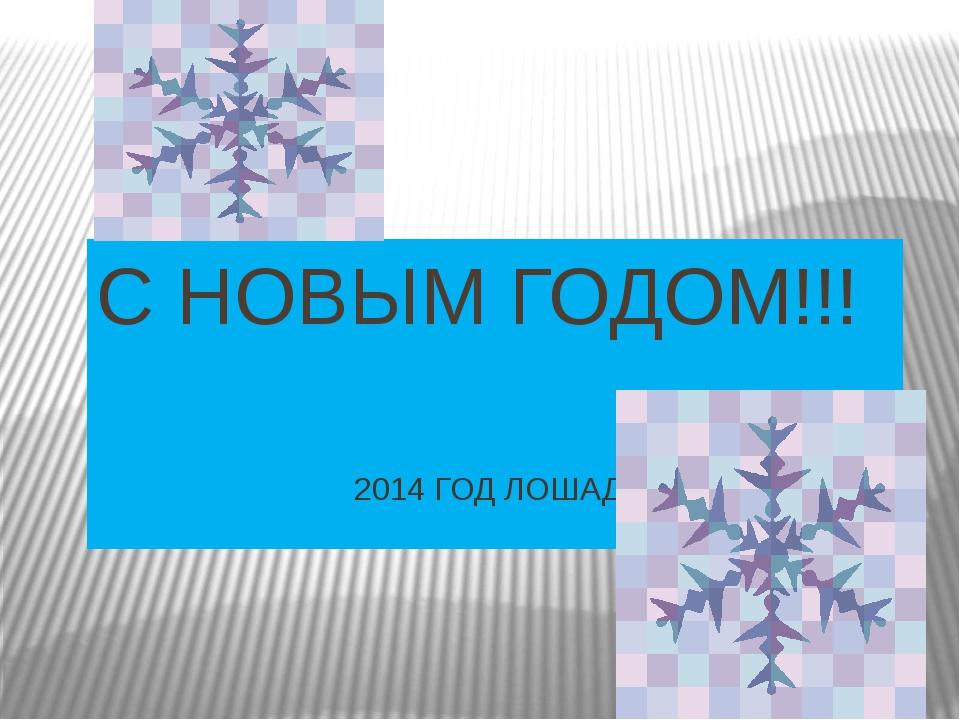 С НОВЫМ ГОДОМ!!! 2014 ГОД ЛОШАДИ