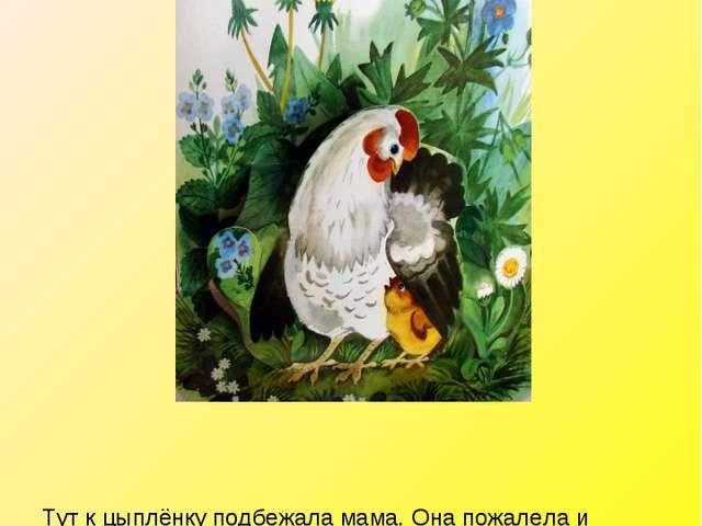 Тут к цыплёнку подбежала мама. Она пожалела и приласкала его. Вот так. К. Чук...