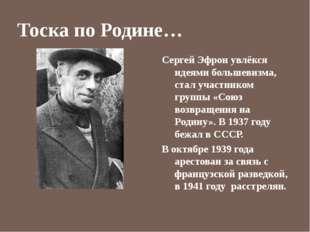 Тоска по Родине… Сергей Эфрон увлёкся идеями большевизма, стал участником гру