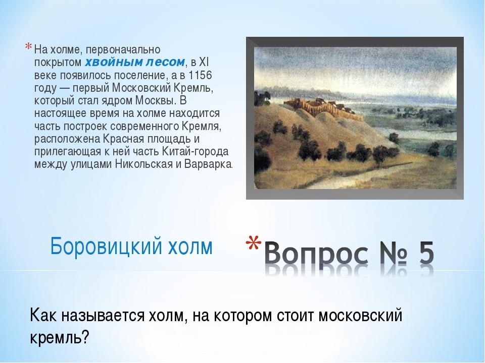 На холме, первоначально покрытомхвойным лесом, в XI веке появилось поселение...