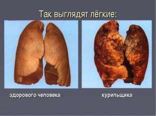 Так выглядят лёгкие: здорового человека курильщика