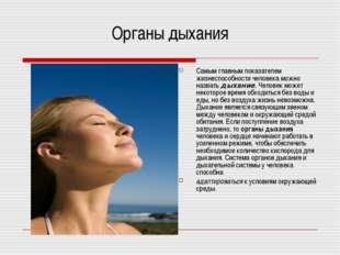 Органы дыхания Самым главным показателем жизнеспособности человека можно назв