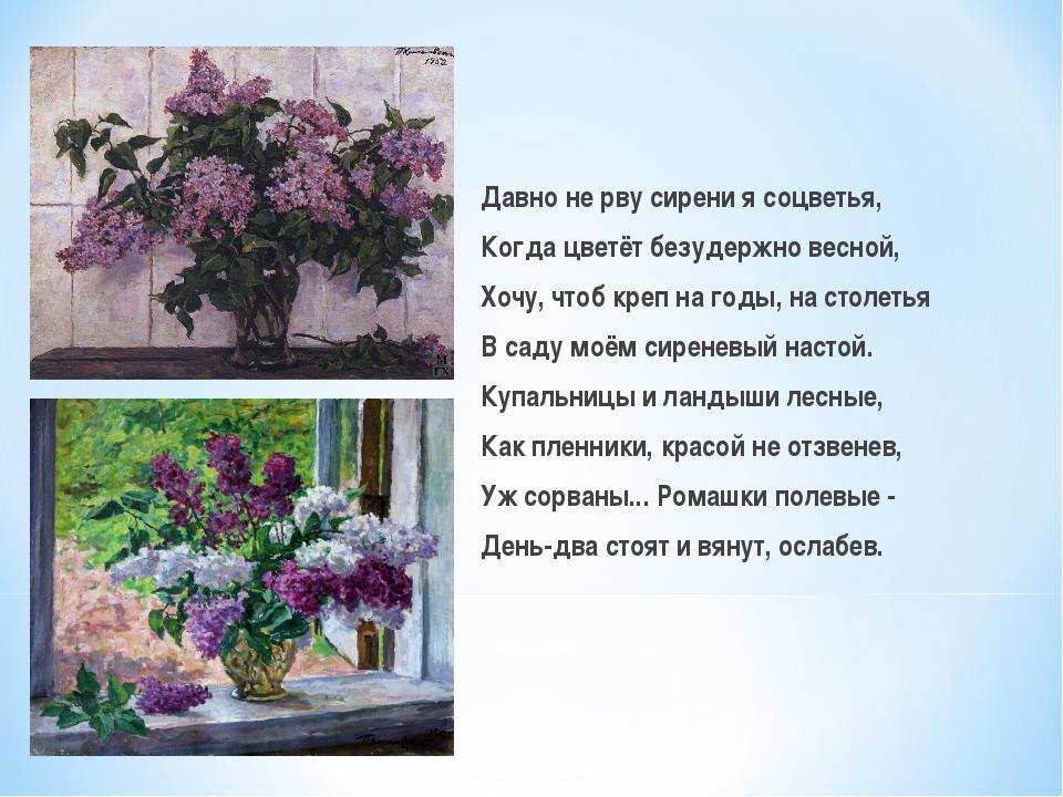 Давно не рву сирени я соцветья, Когда цветёт безудержно весной, Хочу, чтоб кр...