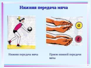Нижняя передача мяча Нижняя передача мяча Прием нижней передачи мяча