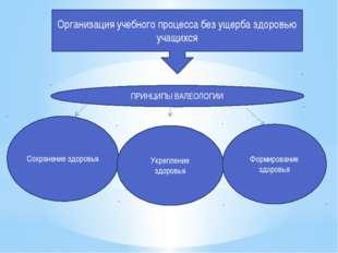 Организация учебного процесса без ущерба здоровью учащихся ПРИНЦИПЫ ВАЛЕОЛОГИ
