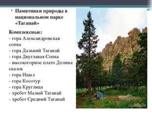 Памятники природы в национальном парке «Таганай» Комплексные: - гора Александ