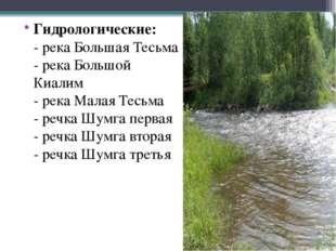 Гидрологические: - река Большая Тесьма - река Большой Киалим - река Малая Тес