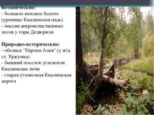 Ботанические: - большое моховое болото (урочище Киалимская падь) - массив шир
