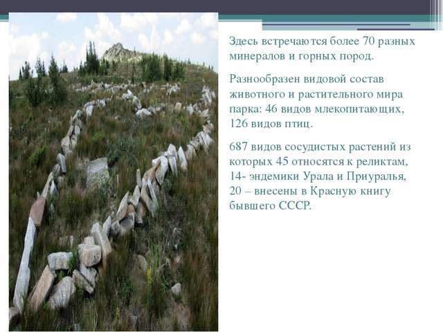 Здесь встречаются более 70 разных минералов и горных пород. Разнообразен вид...