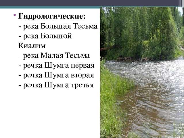 Гидрологические: - река Большая Тесьма - река Большой Киалим - река Малая Тес...