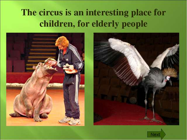 The circus is an interesting place for children, for elderly people Next