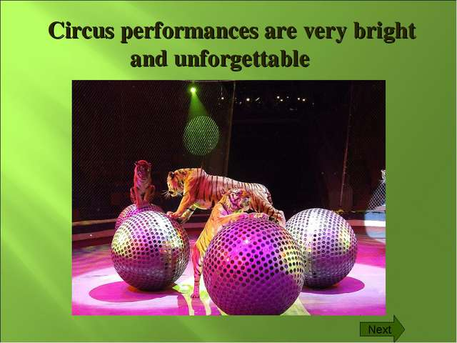 Circus performances are very bright and unforgettable Next