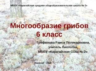 Многообразие грибов 6 класс Трефилова Раиса Поликарповна, учитель биологии, М