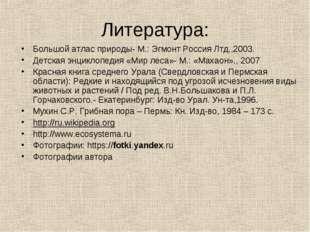 Литература: Большой атлас природы- М.: Эгмонт Россия Лтд.,2003. Детская энцик