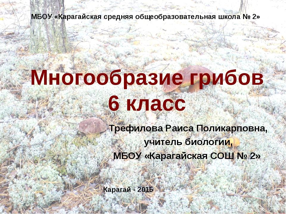 Многообразие грибов 6 класс Трефилова Раиса Поликарповна, учитель биологии, М...