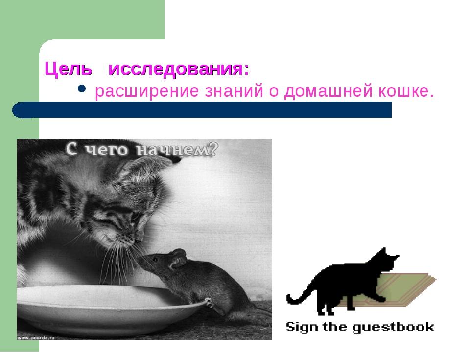 Цель исследования: расширение знаний о домашней кошке.