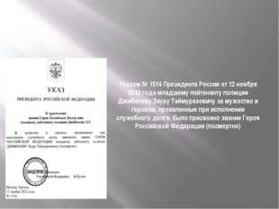 Указом № 1514 Президента России от 12 ноября 2012 года младшему лейтенанту по