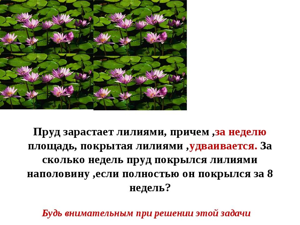Будь внимательным при решении этой задачи Пруд зарастает лилиями, причем ,за...
