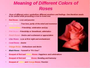 Meaning of Different Colors of Roses Rose of different colors symbolizes diff