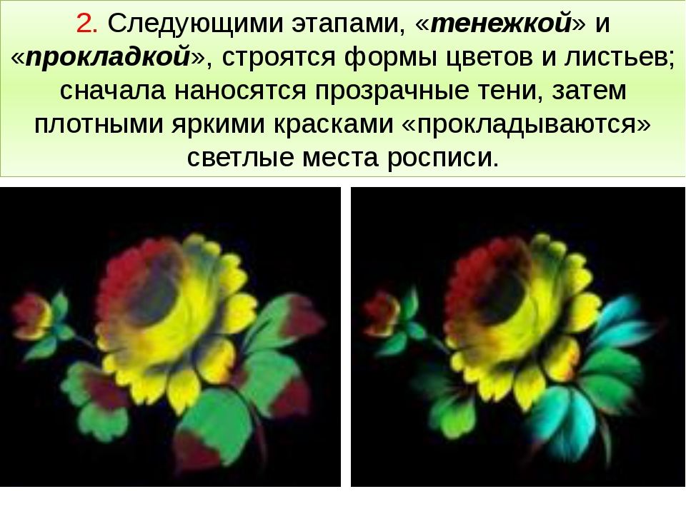 2. Следующими этапами, «тенежкой» и «прокладкой», строятся формы цветов и лис...