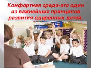 Комфортная среда-это один из важнейших принципов развития одарённых детей.