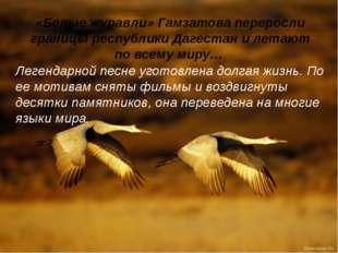 «Белые журавли» Гамзатова переросли границы республики Дагестан и летают по в