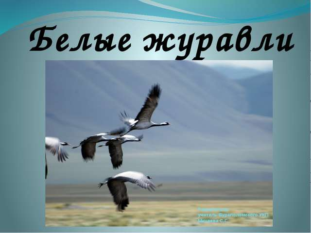 Белые журавли Разработала: учитель Буреполомского УКП Михеева С.Г.