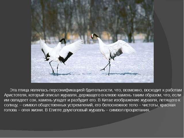 Эта птица являлась персонификацией бдительности, что, возможно, восходит к р...