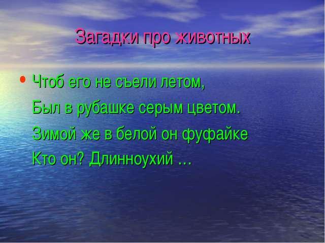 Загадки про животных Чтоб его не съели летом, Был в рубашке серым цветом. Зим...