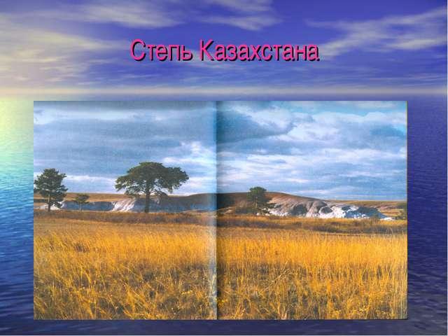 Степь Казахстана