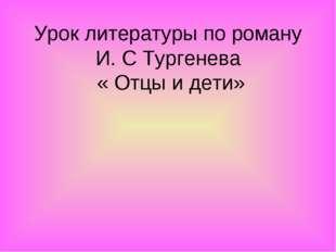 Урок литературы по роману И. С Тургенева « Отцы и дети»