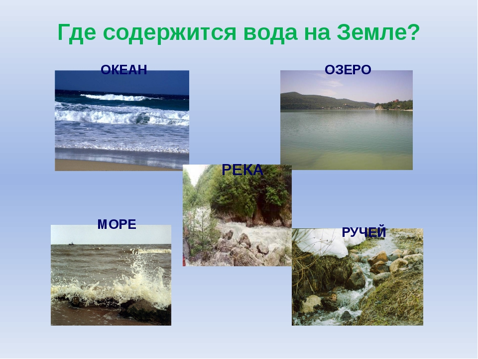 Где содержится вода на Земле? ОКЕАН ОЗЕРО МОРЕ РЕКА РУЧЕЙ