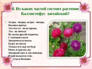 4. Из каких частей состоит растение Каллистефус китайский? Астры - искры, аст